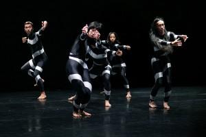 Paula Rosolen «S'étonner et redécouvrir la beauté des mouvements»