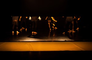 Dança Doente, Marcelo Evelin